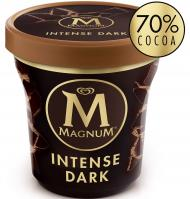TERRINA MAGNUM INTENSE DARK 297 G