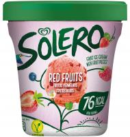 TERRINA SOLERO FRUITS VERMELLS 500 ML